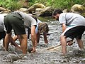 Using the kick seine to collect macroinvertebrate stream animals (4948257664).jpg