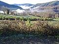 Val de Lóuzara 2 Samos, Galiza.jpg