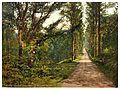 Vale of Lanherne, Carmanton Drive, Cornwall, England-LCCN2002696622.jpg