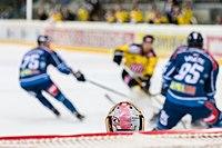 Vienna Capitals vs Fehervar AV19 -86.jpg