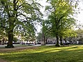 View from the bench (OpenBenches 5930-2).jpg