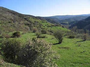 View of La Rioja (Spain).jpg