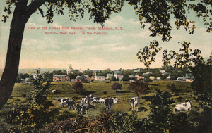 View of Stamford, New York, circa 1911.png