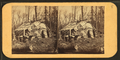 View of a shed of scrap materials, from Robert N. Dennis collection of stereoscopic views.png