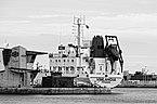 Vinlandia (ship, 1979), Sète 2018 BW.jpg