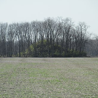 W.C. Clemmons Mound - Roadside view of the mound