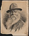 Walt Whitman, head-and-shoulders portrait, wearing hat) - V. Gribayédoff del LCCN2004675311.jpg