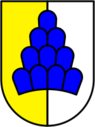 Wappen Salenstein.png