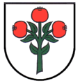Wappen Schwarzach MOS.png