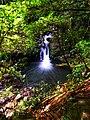 Water Falls in Lamington National Park.jpg