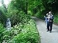 Waterfall, Chantry Lane - geograph.org.uk - 814964.jpg
