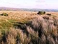 Waun Hirwaun - geograph.org.uk - 682039.jpg