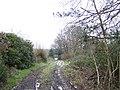 Wealden footpath - geograph.org.uk - 320120.jpg