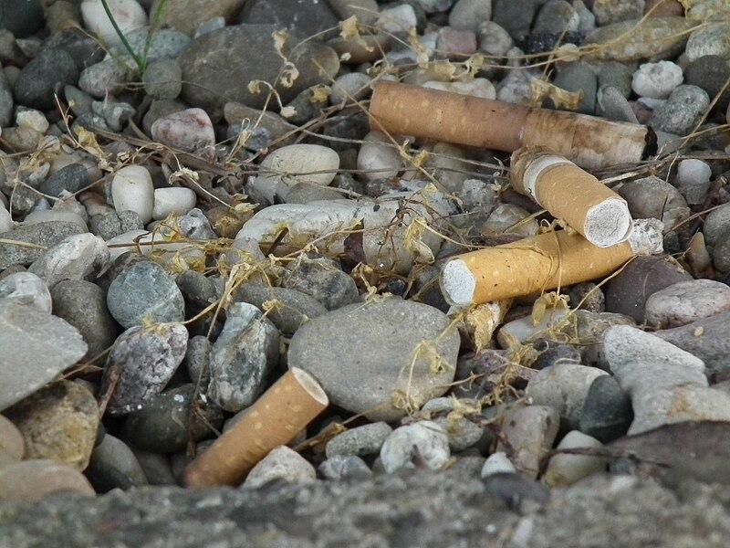 File:Weggeworfene Zigarettenkippen.JPG