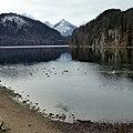 Weißensee (Füssen) - panoramio (1).jpg