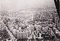 Werner Haberkorn - São Paulo - Vista Aérea, Acervo do Museu Paulista da USP 02 (cropped).jpg