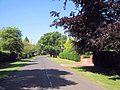 West on Brereton Heath Lane © Jonathan Kington.jpg