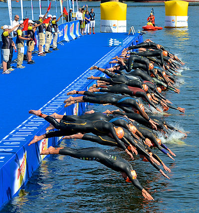 World Triathlon Stockholm 2013 -4.jpg