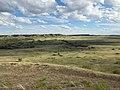Wyoming big sagebrush steppe and greasewood (7495948122).jpg