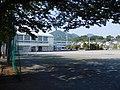 Yui Chu Ground.jpg