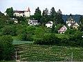 Zürichsee - Meilen IMG 2641.jpg