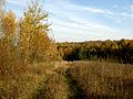 Zagrebellia-dendropark-osin-11102134.jpg