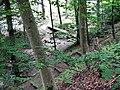Zipfelbachschlucht - panoramio.jpg