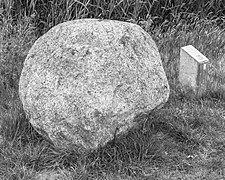 """Zwerfkei (Smâlandgraniet), bij de uitzichttoren """"Seedyk Kiekje"""", Liemerige Wei, Oudemirdum. 10-06-2020 (actm.) 02.jpg"""