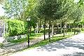 ® MADRID VERDE JARDIN Dña.CONCHA PIQUER - panoramio - Concepcion AMAT ORTA… (15).jpg