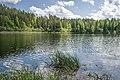Быковщинское озеро1.jpg