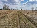 Дорога по полям 2.jpg