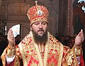 Митрополит Антоній (Паканич) під час літургії.JPG