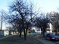 У двары дамоў 16 и 16-1 па вул. Кірава - panoramio.jpg