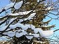 Фото путешествия по Беларуси 344.jpg