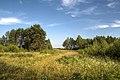 Юрово. Там, где расходится лес и начинаются поля - panoramio.jpg