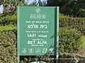 בית הכנסת בבית אלפא 1.jpg