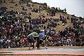جشنواره شقایق ها در حسین آباد کالپوش استان سمنان- فرهنگ ایرانی Hoseynabad-e Kalpu- Iran-Semnan 31.jpg