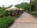 宜蘭綠色博覽會 Yilan Green Expo 2016 - panoramio (1).jpg