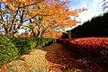 平岡樹芸センター(Hiraoka arboriculture center) - panoramio (29).jpg