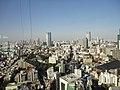 東京タワー大展望台 - panoramio (2).jpg