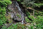 白岩の滝 - panoramio (27).jpg