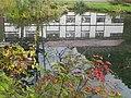 鯉川の池 - panoramio.jpg