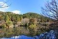 龍安寺 - panoramio (5).jpg