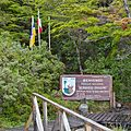 0-Bernardo O'Higgins nationalpark-CTJ-IMG 7520.jpg