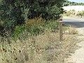 06-06-2017 Section of Via Algarviana long distance footpath, Ferreiras.JPG