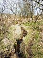 065 L' Elorn près de sa source.JPG