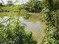 07920jfPampanga River banks Candelaria Welcome Calumpit Bulacan Roadsfvf 20.JPG