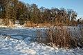 0 Morlanwelz - Grand étang du domaine de Mariemont (2).JPG