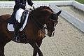 13-04-21-Horses-and-Dreams-Karin-Kosak (13 von 21).jpg
