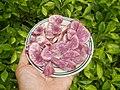 1417Cuisine foods delicacies of Bulacan 21.jpg